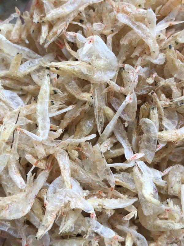 Dry baby shrimps, Jawla , sukkat