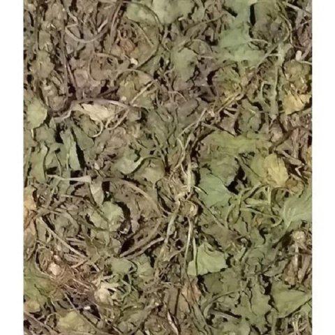 Centella Asiatica, Vallarai, Gotukola, Kodavan, Indian Pennywort, Asiatic Pennywort, Marsh Pennywort, Pennyweed, Sheeprot, Indian Water Navelwort