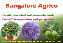 Bangalore Agrico