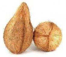 fresh coconut exporter in india